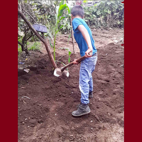 Guatemala - Hoeing Soil for Planting